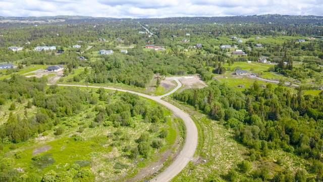L11 B2 Triple Crown Road, Homer, AK 99603 (MLS #20-8330) :: Wolf Real Estate Professionals