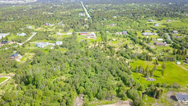 L8 B2 Triple Crown Road, Homer, AK 99603 (MLS #20-8410) :: Wolf Real Estate Professionals