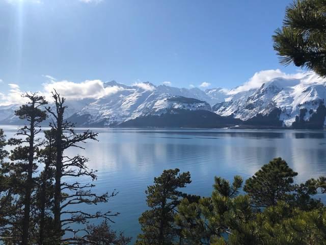 Tr D Mud Bay Road, Haines, AK 99827 (MLS #20-8427) :: The Adrian Jaime Group | Keller Williams Realty Alaska