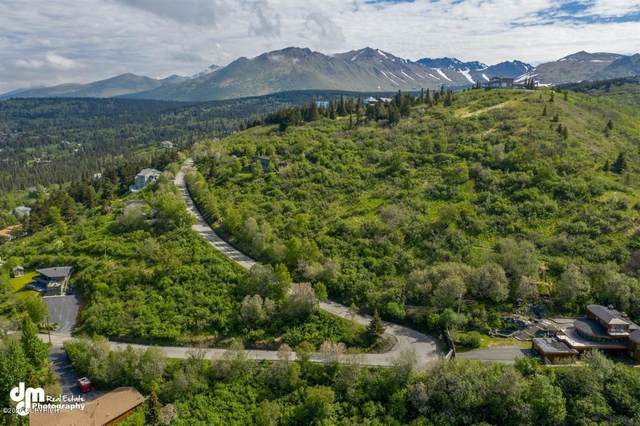 000 T12nr3ws25, Anchorage, AK 99516 (MLS #20-8526) :: Wolf Real Estate Professionals