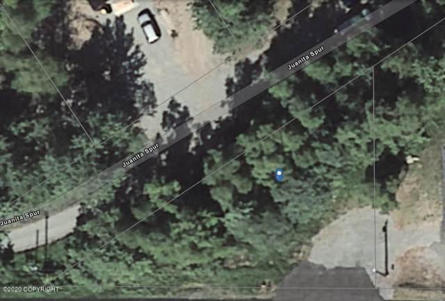 17324 Juanita, Eagle River, AK 99577 (MLS #20-858) :: Wolf Real Estate Professionals