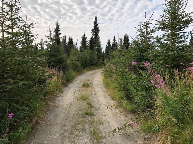 L3 B1 Stina Creek Road, Nikolaevsk, AK 99556 (MLS #20-862) :: RMG Real Estate Network   Keller Williams Realty Alaska Group