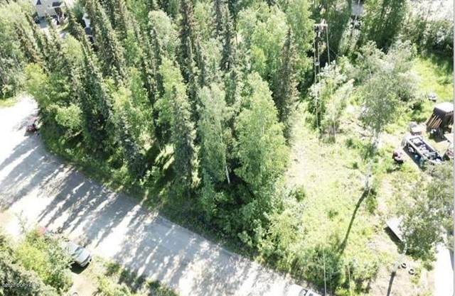 L1A B3 Hawthorne Court, Fairbanks, AK 99709 (MLS #20-8668) :: Wolf Real Estate Professionals