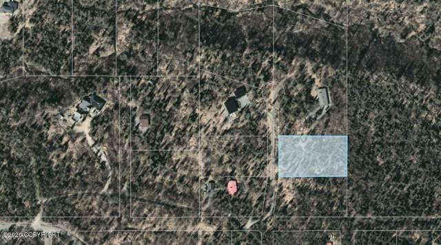 L6 Blair View Circle, Anchorage, AK 99516 (MLS #20-868) :: Wolf Real Estate Professionals