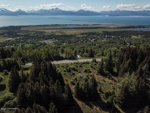 1942 Skyline Drive, Homer, AK 99603 (MLS #20-8751) :: Alaska Realty Experts