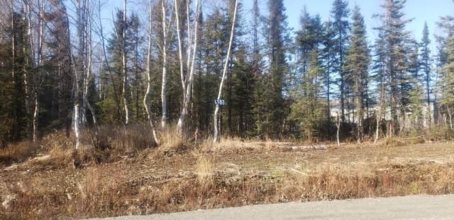 3252 S Morgan Drive, Wasilla, AK 99623 (MLS #20-8766) :: Wolf Real Estate Professionals