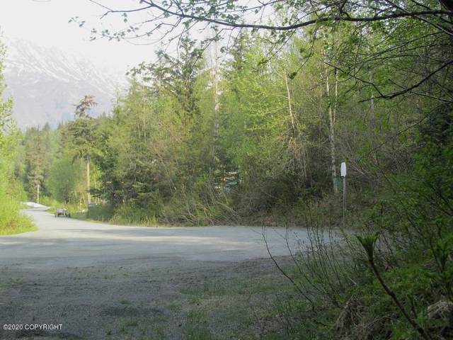 L20 Mosquito Lake Road, Haines, AK 99827 (MLS #20-885) :: Roy Briley Real Estate Group