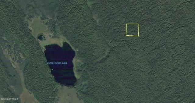 AS #89-229 Donkey Creek Lake (No Road), Remote, AK 99000 (MLS #20-8859) :: RMG Real Estate Network | Keller Williams Realty Alaska Group