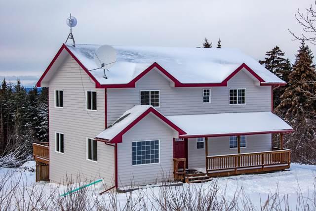 40395 Forest Drive, Homer, AK 99603 (MLS #20-892) :: RMG Real Estate Network | Keller Williams Realty Alaska Group