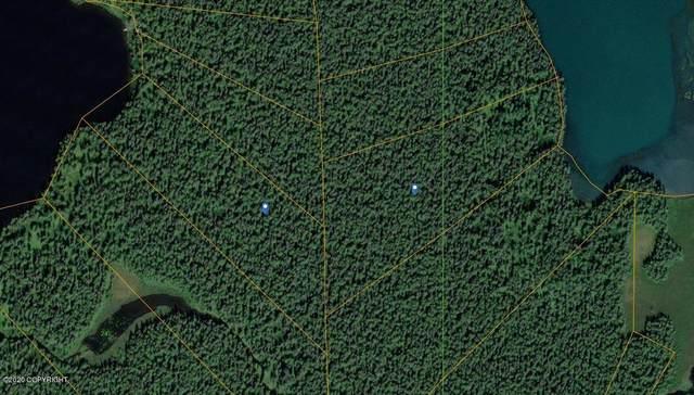L45 Hewitt Lake, Remote, AK 99000 (MLS #20-8936) :: RMG Real Estate Network | Keller Williams Realty Alaska Group