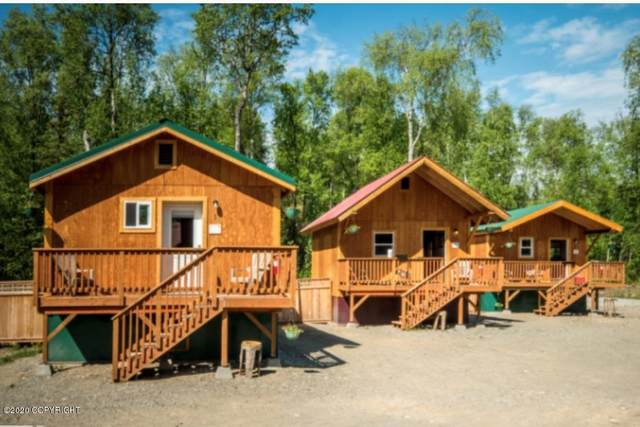14969 E Love-Lee, Talkeetna, AK 99676 (MLS #20-9000) :: RMG Real Estate Network | Keller Williams Realty Alaska Group