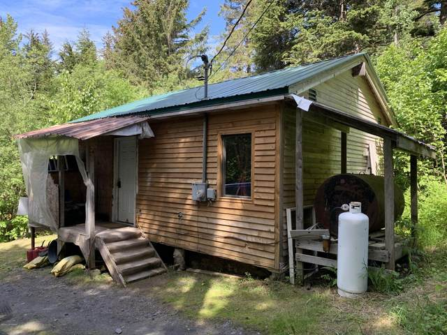 12284 Merlin Drive, Seward, AK 99664 (MLS #20-9058) :: Wolf Real Estate Professionals