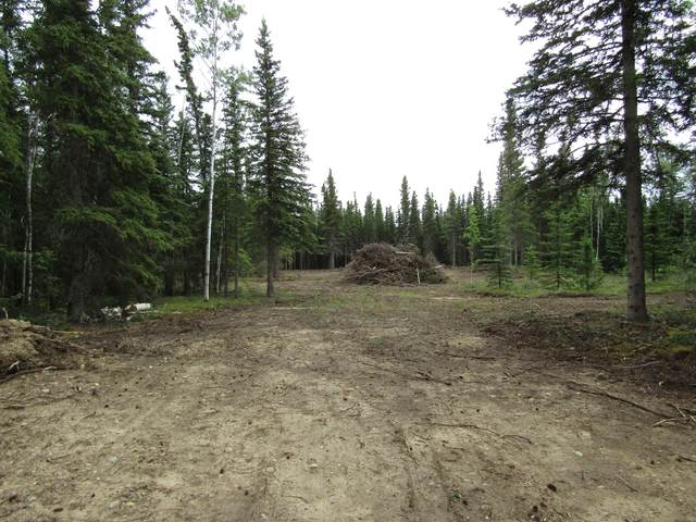 L13-14 Siedschlag Drive, Delta Junction, AK 99737 (MLS #20-9101) :: Wolf Real Estate Professionals