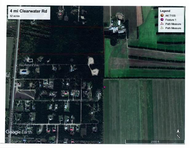 Mi 4 Clearwater Road, Delta Junction, AK 99737 (MLS #20-9164) :: RMG Real Estate Network | Keller Williams Realty Alaska Group