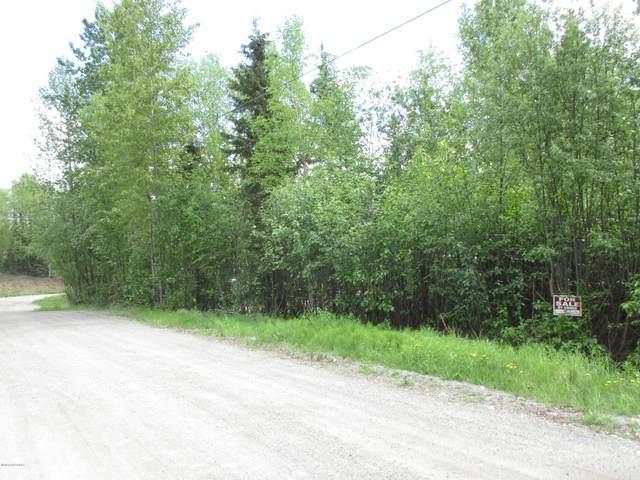 6500 W Yeomen Drive, Wasilla, AK 99623 (MLS #20-9228) :: Wolf Real Estate Professionals