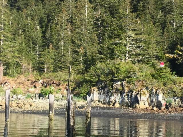 L3C Port Ashton Lot, Chenega Bay, AK 99574 (MLS #20-9253) :: RMG Real Estate Network | Keller Williams Realty Alaska Group