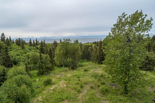 10763 Sterling Highway, Ninilchik, AK 99639 (MLS #20-9299) :: Wolf Real Estate Professionals
