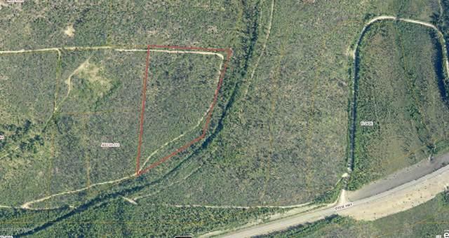 000 Steese Highway, Fairbanks, AK 99712 (MLS #20-9302) :: Wolf Real Estate Professionals