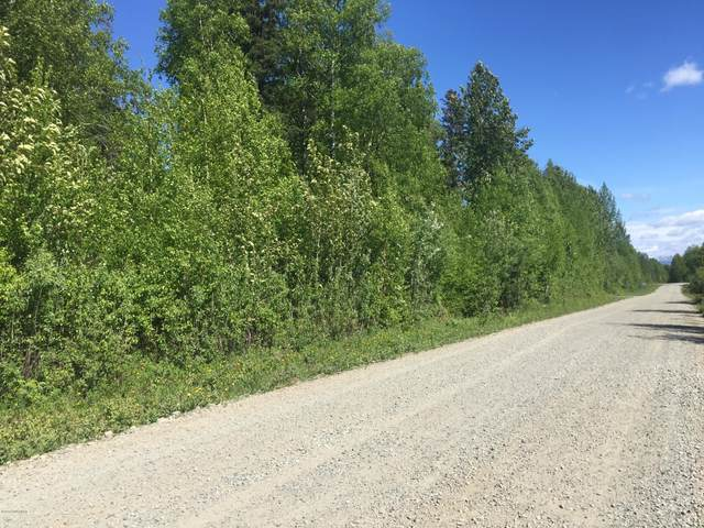 8665 Devonshire Drive, Trapper Creek, AK 99683 (MLS #20-9359) :: RMG Real Estate Network | Keller Williams Realty Alaska Group