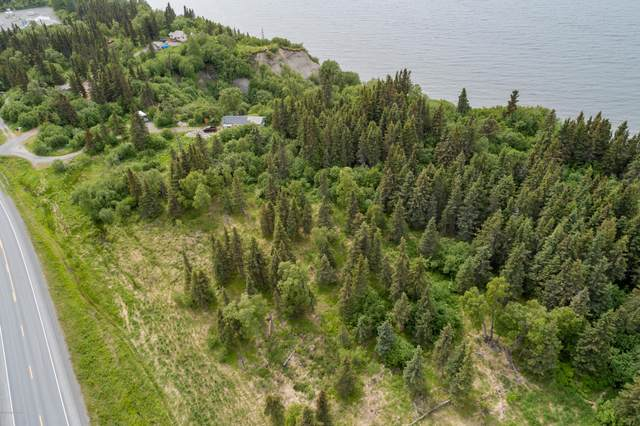 67360 Sterling Highway, Clam Gulch, AK 99568 (MLS #20-9375) :: Wolf Real Estate Professionals
