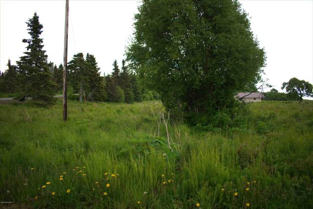 22150 Becharof Circle, Kasilof, AK 99610 (MLS #20-9401) :: Wolf Real Estate Professionals