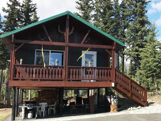 C008 Easement, Chickaloon, AK 99674 (MLS #20-9438) :: RMG Real Estate Network | Keller Williams Realty Alaska Group