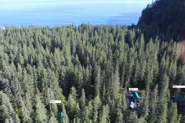 Remote Johnstone Bay, Seward, AK 99664 (MLS #20-9554) :: Wolf Real Estate Professionals