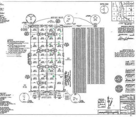 L15 Van Bueren Road, Delta Junction, AK 99737 (MLS #20-9600) :: RMG Real Estate Network | Keller Williams Realty Alaska Group