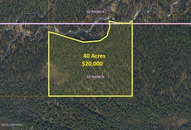 Tr H Papa Bear Lake Area, Talkeetna, AK 99676 (MLS #20-9648) :: Team Dimmick