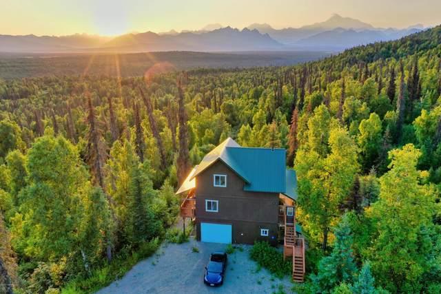 Mi 133 Parks Highway, Trapper Creek, AK 99683 (MLS #20-9684) :: RMG Real Estate Network | Keller Williams Realty Alaska Group