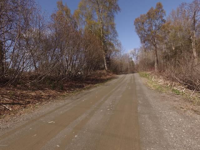 L15 Peninsula Park Estates, Nikiski/North Kenai, AK 99635 (MLS #20-9705) :: Powered By Lymburner Realty