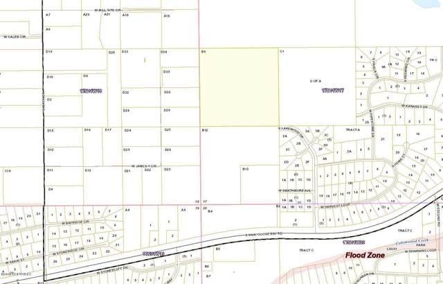 B008 Lakewood Drive, Wasilla, AK 99654 (MLS #20-9725) :: RMG Real Estate Network | Keller Williams Realty Alaska Group