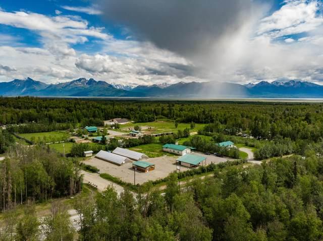 4985 W Fairview Loop, Wasilla, AK 99654 (MLS #20-9734) :: Wolf Real Estate Professionals
