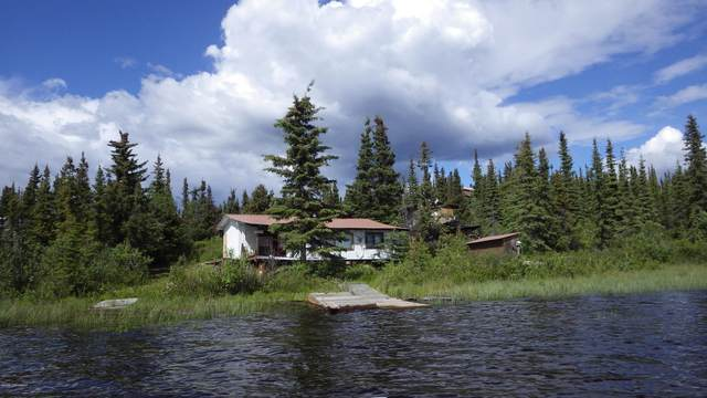 L3A Susitna Lake, Glennallen, AK 99588 (MLS #20-9786) :: Alaska Realty Experts