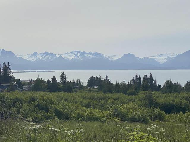1185 Eric Lane, Homer, AK 99603 (MLS #20-9795) :: The Adrian Jaime Group | Keller Williams Realty Alaska