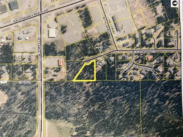 L3 Commerce Street, Soldotna, AK 99669 (MLS #20-9797) :: RMG Real Estate Network | Keller Williams Realty Alaska Group