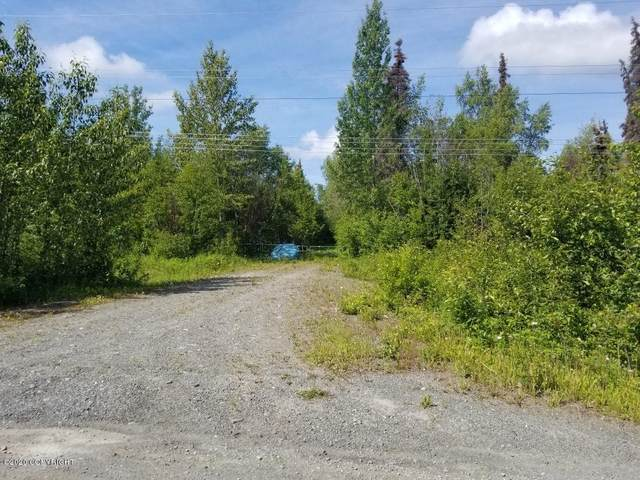 355 Boundary Street, Soldotna, AK 99669 (MLS #20-9892) :: Wolf Real Estate Professionals
