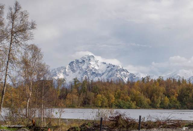 5560 E Cherry Circle, Wasilla, AK 99654 (MLS #20-993) :: RMG Real Estate Network | Keller Williams Realty Alaska Group