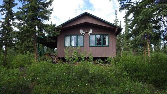 L3B Susitna Lake, Glennallen, AK 99588 (MLS #20-9971) :: Wolf Real Estate Professionals