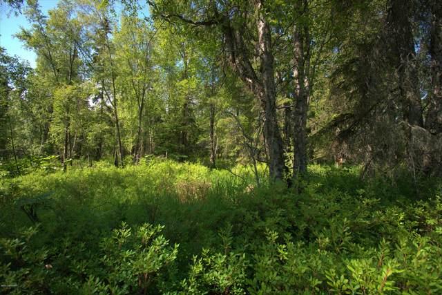L6 B5 Island Lake Road, Nikiski/North Kenai, AK 99635 (MLS #20-9989) :: Wolf Real Estate Professionals