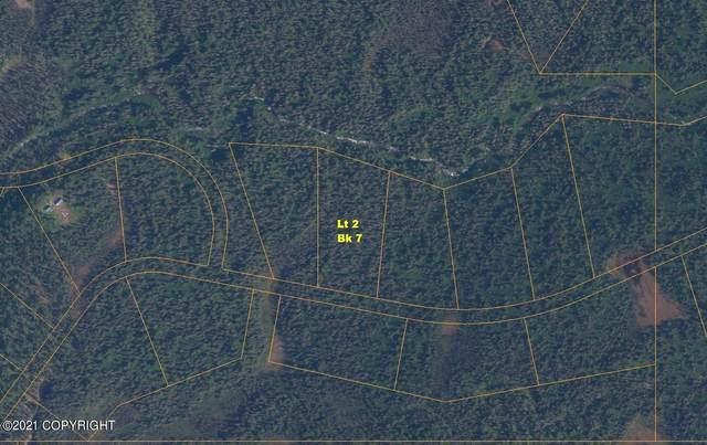 L2 B7 Middle Fork Drive (No Road), Talkeetna, AK 99676 (MLS #21-10022) :: Team Dimmick