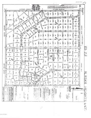 L20 BF Leng Road, Delta Junction, AK 99737 (MLS #21-1004) :: Team Dimmick