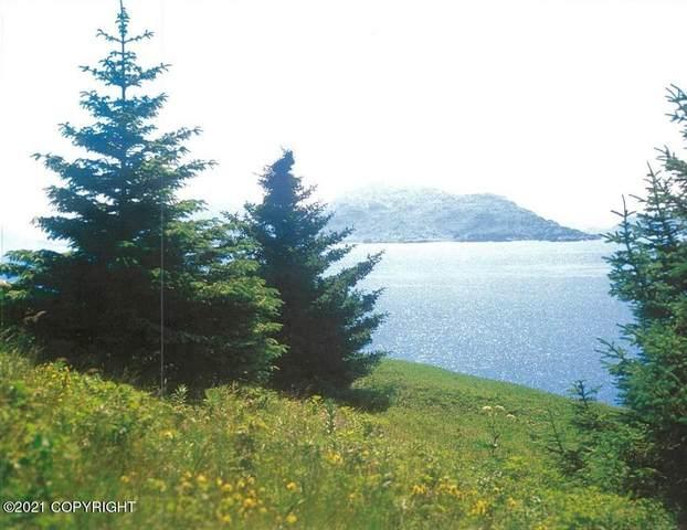 NHN Viekoda Bay, Port Lions, AK 99550 (MLS #21-10103) :: Alaska Realty Experts