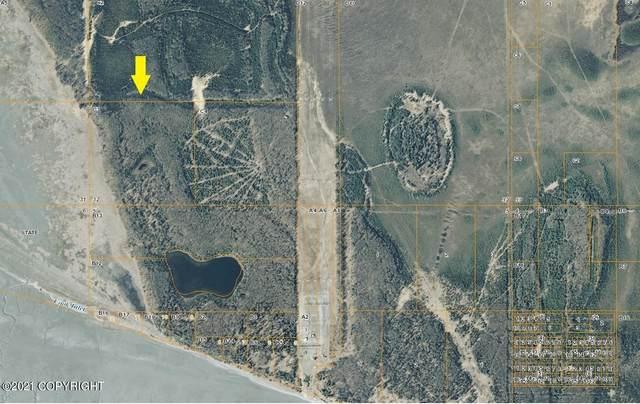 Parcel C3 No Road, Wasilla, AK 99654 (MLS #21-10165) :: Team Dimmick