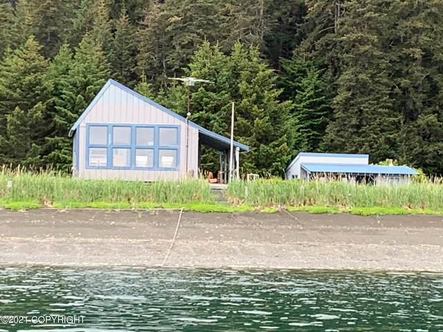 L1-3 Krevetka Point, Seldovia, AK 99663 (MLS #21-10171) :: Alaska Realty Experts