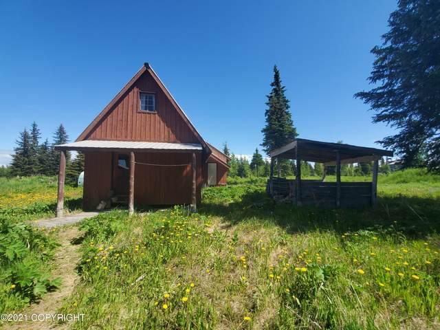 34341 N Fork Road, Anchor Point, AK 99556 (MLS #21-10179) :: Alaska Realty Experts