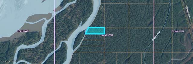 C005 No Road, Talkeetna, AK 99676 (MLS #21-10219) :: Wolf Real Estate Professionals