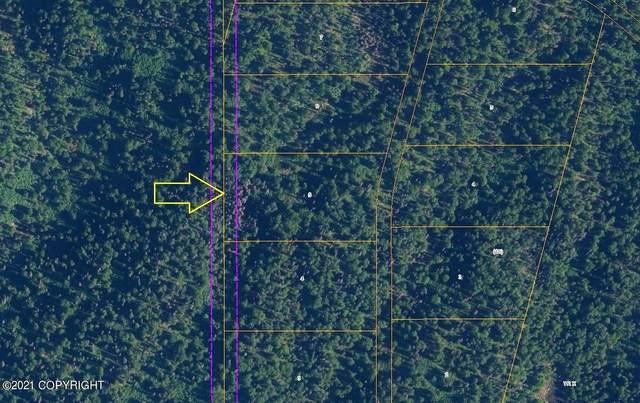 L6 B18 Loriens Trail (No Road), Talkeetna, AK 99676 (MLS #21-10257) :: Team Dimmick
