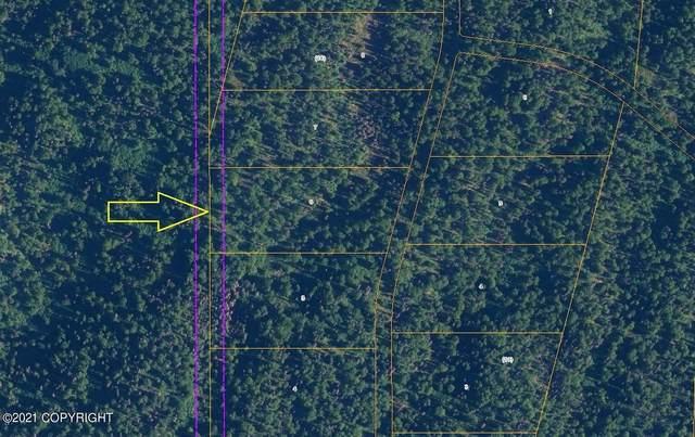 L5 B18 Loriens Trail (No Road), Talkeetna, AK 99676 (MLS #21-10259) :: Team Dimmick