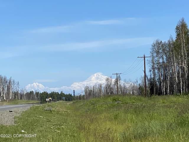 57363 S Parks Highway, Talkeetna, AK 99676 (MLS #21-10271) :: Wolf Real Estate Professionals